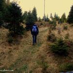 ...mein erster Weg führt hinauf zur Wildwiese...