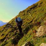 Mein Weg führt heute über die Obere Ischkarneialm zum Pregimelbach und weiter über den Hochscherenweg....