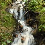 schöner Wasserlauf