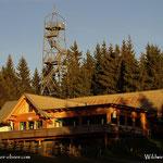 ....die Wildwiesenhütte und der Aussichtsturm in der Nachmittagssonne....
