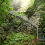 ein Blick zurück, zum Zustieg zur Tropfsteinhöhle, bzw. der Weg nach Lackenhof