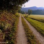 ....ich wandere entlang am Feistritztal Radweg nach.....