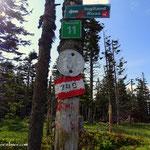 """....""""Hinweisbaum"""" am Steinriegel, viele Wege, viele Ziele....."""
