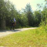 nach dem Abstieg durch das Satteltal geht es entlang der Leutascher Ache nach Leutasch Gasse.