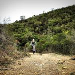 E-Mountain Bike Tour, Arrifana - Carrapateira,  Algarve Bike Aljezur