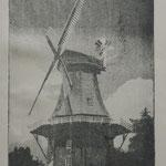 Erich Ludwig: Mühle