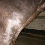 Dry Needling am Oberarm-Kopf Muskel