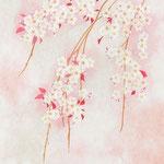 フリー素材・和風イラスト・貼り絵・薄桜