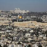 Экскурсии в Израиле, туры в Израиль. IsraToursVIP - экскурсии в Израиле для групп и частных туристов. Личный гид в Израиле.  Экскурсии в Израиле. Индивидуальные туры и экскурсии в Израиле. Лучшие русскоязычные гиды.
