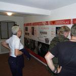 Informationstafeln über die Lebensweise der Hufeisennasen