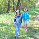 Auf dem Weg in den Wald