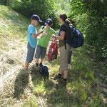 Wir sammeln Naturschätze