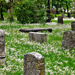 Friedhof. Irland