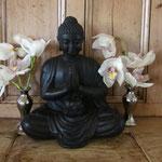 Orchidee met boedha