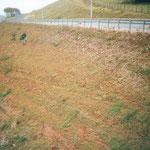 Talus autoroutier traité par hydroseeding : échec de la solution initiale remplacée en Covamat