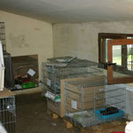 separater Aufnahmeraum für Katzen, die aus der staatlichen Tötungsstation aufgenommen werden
