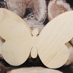 Zirben-Schmetterling groß