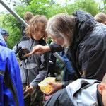 Kräuterkunde mit der Käuterhexe Marianne