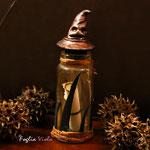 The Potter Bottle