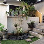 階段下の小庭