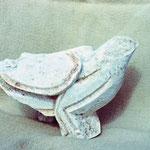 Kamena golubica Bribirska Glavica