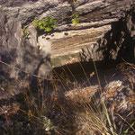 In dem Gebiet wurden früher Mineralien abgebaut. Hier noch ein alter Eingang zur Mine. Des öfteren hat man auf dem Weg auch noch ein paar Bergkristalle rumliegen sehen.