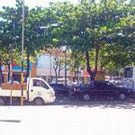 Noch vom Busbahnhof fotografiert...