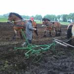 Pferdegespannpflügen