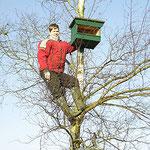 Christian ist schwindelfrei und befestigt einen Brutkasten für Turmfalken.
