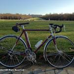 初めてその自転車で訪れると撮る構図で撮影。自転車に日が当たらないのが残念。