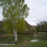 人のうちの農場の中の池が釣り場という感じです。