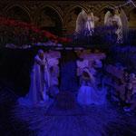 ノートルダム寺院のクリスマス。これはiPhoneにて撮影。