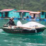 ハロン湾。昔ながらのベトナムが残ってます
