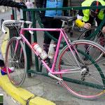 ピンクのサンジェもステキ