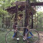到着。後の木の上の小屋のバンガローで一週間