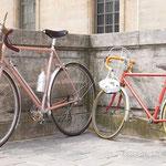 ゴールあとの娘の自転車と一緒に