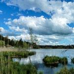 Idyllischer Moorsee