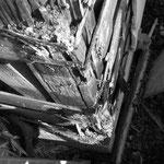 工事中:外壁漏水で木が濡れて蟻害発生の痕(通柱・土台)