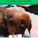 OTTO A 6 MESI DI VITA  SPIAGGIA DI OROSEI SARDEGNA 1998