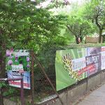 Kolonie Stadtpark 1
