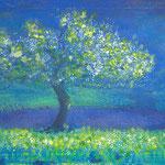 Baum im Lavendelfeld