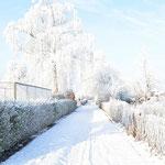 Winter in der Geestheller Gartenanlage, Foto: Kaden