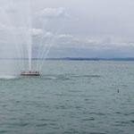 Suchbild - Wasserfontäne mit Ente