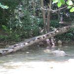 Brücke – abgebrochen!