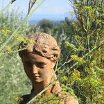 Eine Schöne im Garten ... (1)