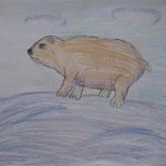 """Матюнина Настя. 9 лет. """" Я белый медведь!"""""""