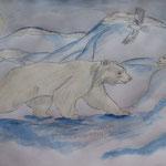 """Сидорова Алина. 8 класс. """"Белые медведи в белой Арктике!"""""""