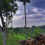 Tabanan land for sale