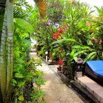 Bali property for sale