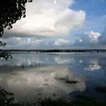 Vue sur les marais